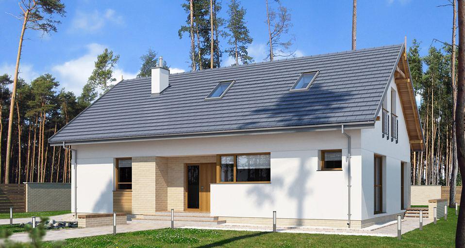 Projekt domu Prosty dom parterowy E-185a