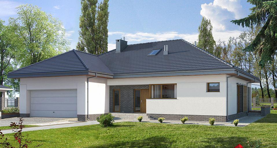 Projekt domu Duży dom parterowy E-151