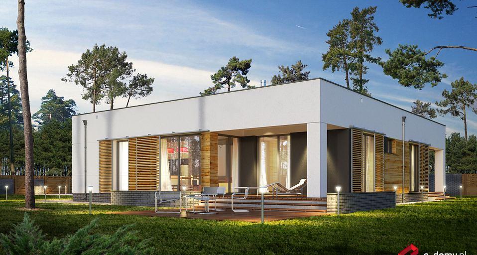 Projekt domu Dom parterowy z płaskim dachem E-205