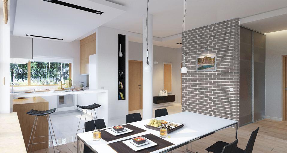 Projekt domu E-183 Parterowy dom z płaskim dachem