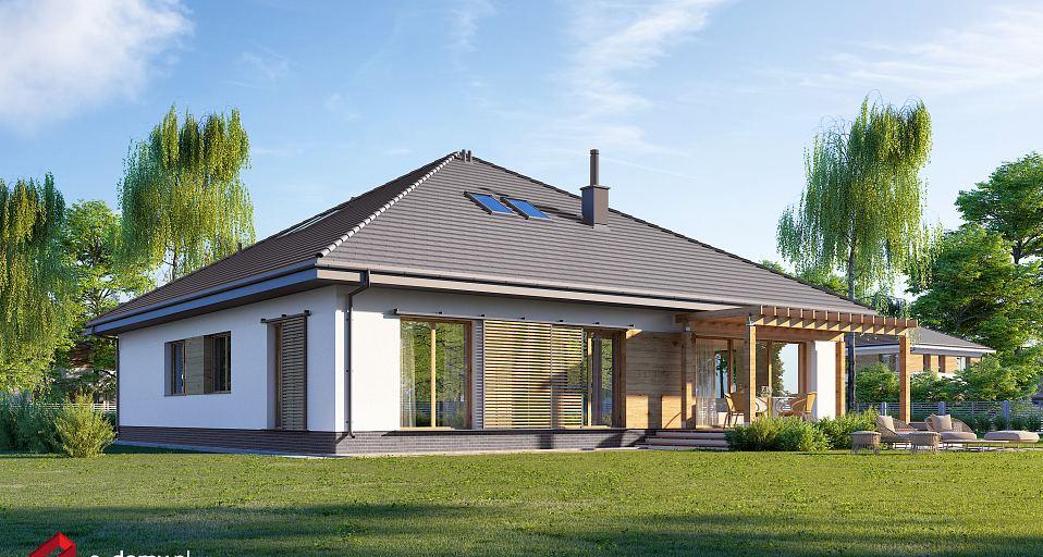 Projekt domu Duży dom parterowy E-246