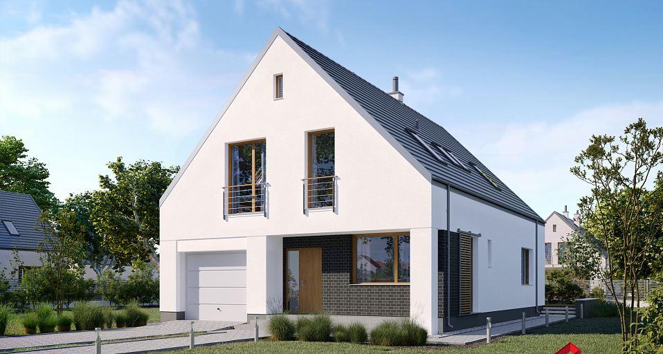 Projekt domu Dom w typie nowoczesnej stodoły E-258
